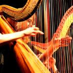 Прародительница всех струнных инструментов